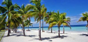Bohol Beach Club Resort Palms Beach