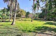 Bohol Lot for sale
