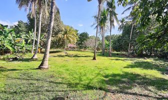 Bohol Lot for sale