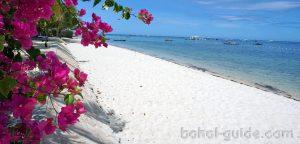 Danao Beach Panglao Bohol