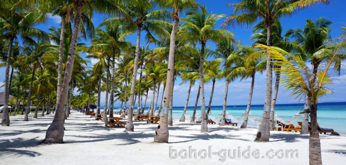 Panglao Beaches - Bohol Beach Club