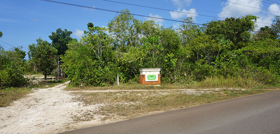 Land for sale in Panglao