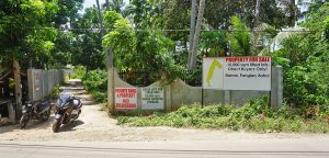 Panglao Lot for sale rent